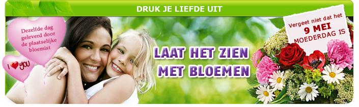 euroflorist-nl-moederdag-bloemen
