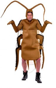 Carnavalspak kakkerlak
